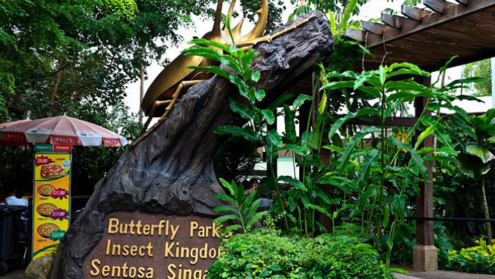 Butterfly Park And Insect Kingdom, best singapore tour operators in Bangalore, INDIA