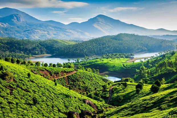 Munnar | Best South India tour packages from Bangalore, Karnataka, India